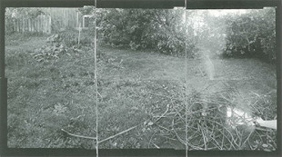 The 'Panoramic' Photographs of Marie Shannon